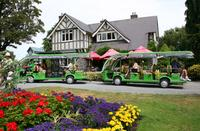 Christchurch Botanic Gardens avec, en option Hop-On Hop-Off Tram, Gondola et rivière Avon Canoter - Christchurch -