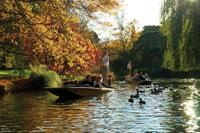 Punting on the Avon River with Optional Christchurch Gondola and Botanic Gardens Tour, Christchurch Tours and Sightseeing