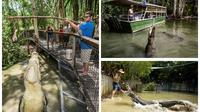 Hartley's Big Crocodile Feeding Experience from Cairns