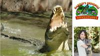 Hartley's Crocodile Adventures Day Trip from Cairns, Cairns Tours and Sightseeing