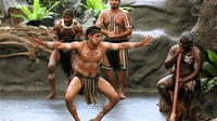 Tjapukai Indigenous Culture Experience and Palm Cove Day Trip from Cairns image 1