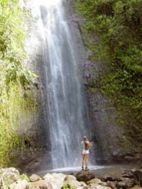 Manoa Waterfall Small Group Adventure