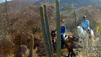 Oaxaca Discovery Overnight Horseback Riding Adventure
