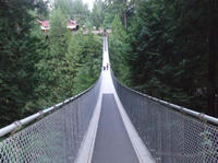 Vancouver Shore Excursion: Capilano Suspension Bridge and Grouse Mountain