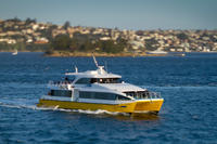 Sydney Whale-Watching Cruise