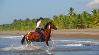 Beach Horseback Riding Adventure from Jaco