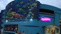 Cancun Interactive Aquarium Admission Ticket