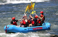 American River Rafting Day Trip Adventure