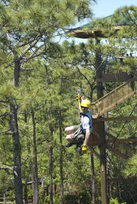 Picture of Gatorland Orlando Zipline Adventure