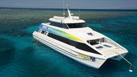 Great Barrier Reef Eco Snorkel and Dive Cruise from Cairns Including Lunch
