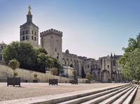 Avignon Walking Tour Including Entrance to the Pope's Palace