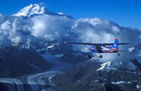 Picture of Denali National Park Flightseeing Tour from Talkeetna