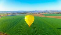 Hot Air Ballooning including Champagne Breakfast from the Gold Coast or Brisbane image 1