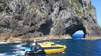 Half-Day Bay of Islands Discovery Tour from 	Paihia, Paihia Tours and Sightseeing