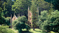 Small-Group Day Trip from Hobart to Port Arthur Private Car Transfers