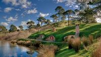 Auckland Shore Excursion: Small-Group Hobbiton Movie Set Tour, Auckland CBD Tours and Sightseeing