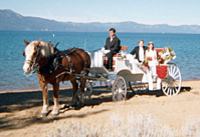 Picture of Lake Tahoe Carriage Ride