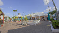 Best of the Grand Bahamas Tour image 1