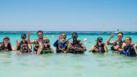 Freeport Discover Scuba Diving Experience image 1