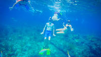 Freeport Reef Snorkeling Adventure with Beach Break and Shopping image 1