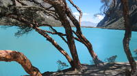 Full-Day Llanganuco Lakes Private Tour from Huaraz