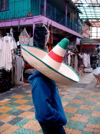 Independent Day Trip to Tijuana from Los Angeles