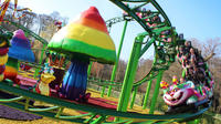 Skip-The-Line Paultons Park and Peppa Pig World Tour from Bournemouth