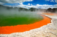 Rotorua Eco Thermal Small Group Full-Day Tour, Rotorua Bus & Train Transport