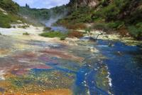 Rotorua Eco Thermal Small Group Morning Tour, Rotorua Tours and Sightseeing