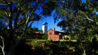 Wirra Wirra Vineyard: Classic McLaren Vale Tour Including Grenache, Cabernet and Shiraz Masterclass