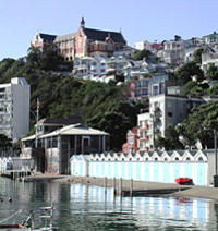 Wellington City Sightseeing Small-Group Tour