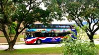 San Jose City Sightseeing by Double-Decker Bus with Lunch
