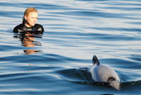 Akaroa Shore Excursion: Swim with Dolphins in Akaroa Harbour, Akaroa Tours and Sightseeing