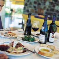 Yarra Valley Food and Wine Small Group Tour