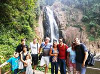 Logo/Picture:Khao Yai National Park and Elephant Ride Day Trip from Bangkok