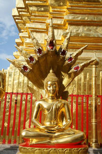 Private Tour: Chiang Mai City and Temples Private Car Transfers