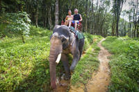 Private Tour: Elephant Adventure, Hilltribes and Mae Kok River Trip from Chiang Rai