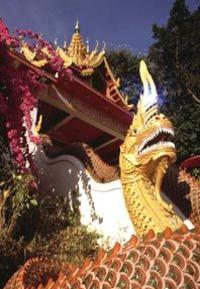 Private Transfer: Chiang Mai Airport to Four Seasons Hotel Arrival Transfer