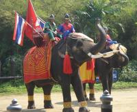 Sampran Elephant Ground and Zoo Tour from Bangkok