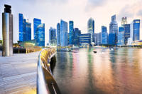 Singapore Arrival Transfer: Airport to Cruise or Ferry Port