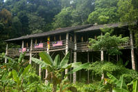 Traditional Bidayuh Village Bamboo Longhouse Tour