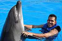 Picture of Cabo Dolphin Encounters