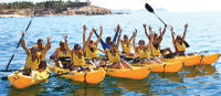 Picture of Los Cabos Sea Adventure: Snorkeling, Kayaking and Stand-Up Paddleboarding