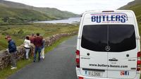 Private Ring of Kerry Bus Tour from Cork for 1-12 Passengers