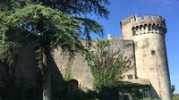 Bracciano Castle Half-Day Tour from Rome with Lunch