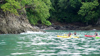 Ocean Kayak and Snorkeling at Manuel Antonio