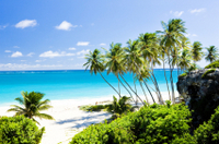 Barbados Shore Excursion: Barbados in a Day Tour