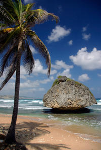 Barbados Shore Excursion: Coastal Sightseeing Tour