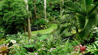 Barbados Sightseeing Tour: Hunte's Garden and St Nicolas Abbey image 1