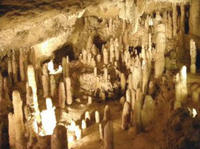 Natural Wonders of Barbados Tour including Harrison's Cave